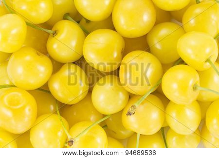 Cherry (sweet Cherry - Yellow)