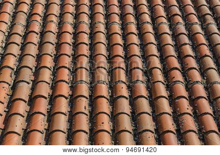 Roof Clay Tiles