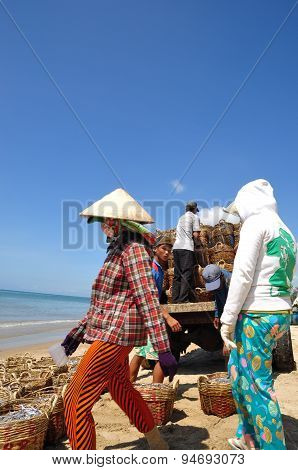 Lagi, Vietnam - February 26, 2012: Local Women Are Uploading Fisheries Onto The Truck To The Process