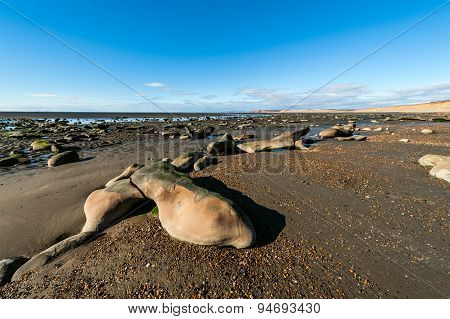Low Tide In The Beagle Channel, Tierra Del Fuego - Ushuaia, Patagonia, Argentina