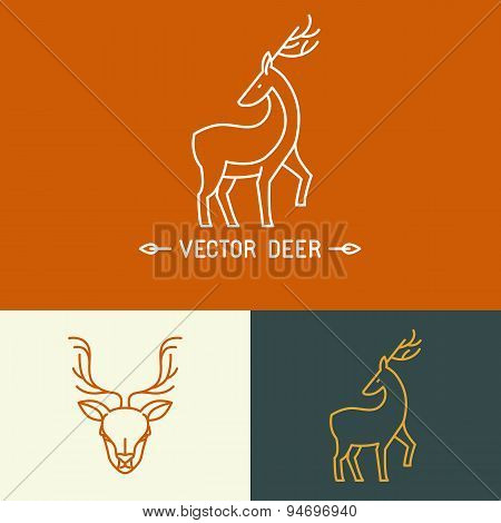 Vector Deer Logo Template In Trendy Linear Style