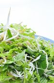 foto of laxatives  - Dish of Vietnamese herbs on a white background - JPG