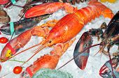 foto of lobster tail  - Frozen lobster on ice for sale at the market - JPG