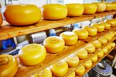 picture of meals wheels  - Cheese wheels on the shelves in diary production factory  - JPG