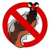 foto of slug  - Anti pest sign with a funny cartoon slug - JPG