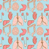 pic of internal organs  - Sketch internal organs in vintage style vector seamless pattern - JPG