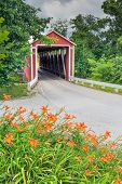 image of covered bridge  - Orange roadside lilies bloom near a red covered bridge in rural Franklin County Indiana. Enochsburg Stock-heughter Covered Bridge. ** Note: Soft Focus at 100%, best at smaller sizes - JPG