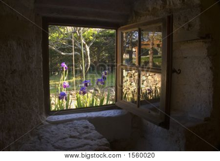 Cottage Window And Iris