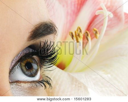 Beautiful lines in nature. Close-up of woman hazel eye. Pink flower on background.