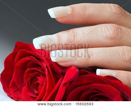Woman hand with red roses