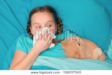 Girl lying in bed with a fluffy cat and blowing his nose into a handkerchief. View from above