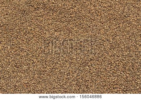 Expanded clay background/ This is decorative artificial material to plants.