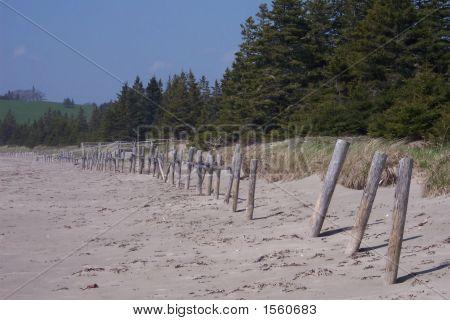 Risser'S Beach