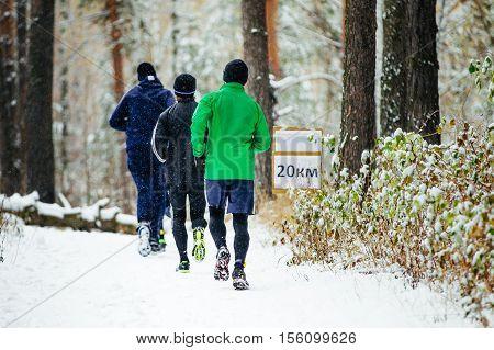 group of runners men run a marathon in winter snow pine forest