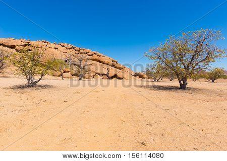 The Namib Desert At Twyfelfontein, In The Majestic Damaraland Brandberg Region, Scenic Travel Destin