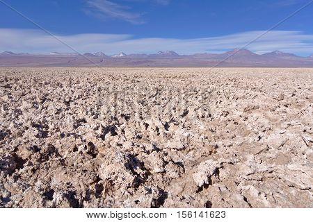 Salty natural formations in Salar de Atacama