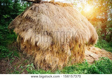 Straw bales on farmland. A bale of straw. Straw. Straw bales stacked in a heap.