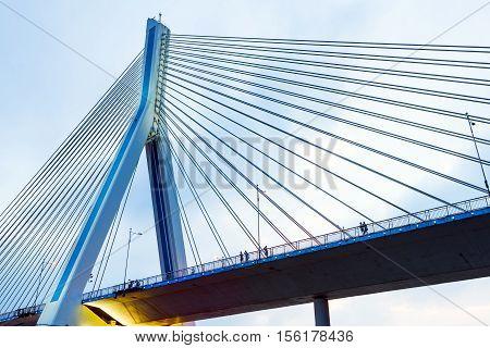 China Yangtze River cable-stayed bridge on the evening landscape.