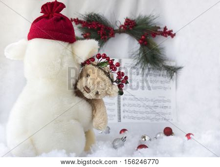 horizontal christmas image of stuffed toy lamb with hat holding  toy brown bear looking over the lambs shoulder at camera with green fern and cranberry and sheet music in the back on white background