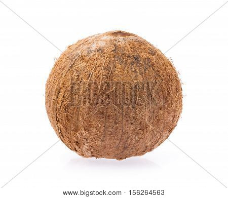 brown Coconut isolated on a white Background