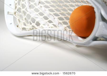 Lacrosse Head