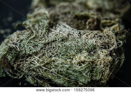 Close-up Photo Of Dried Sphagnum Moss. Stock Photo.