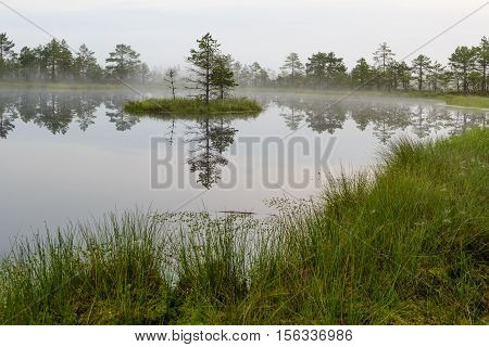 Misty bog landscape with lake and small island, Estonia.