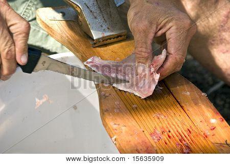 Cutting Away The Bone