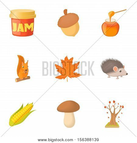 Autumn coming icons set. Cartoon illustration of 9 autumn coming vector icons for web