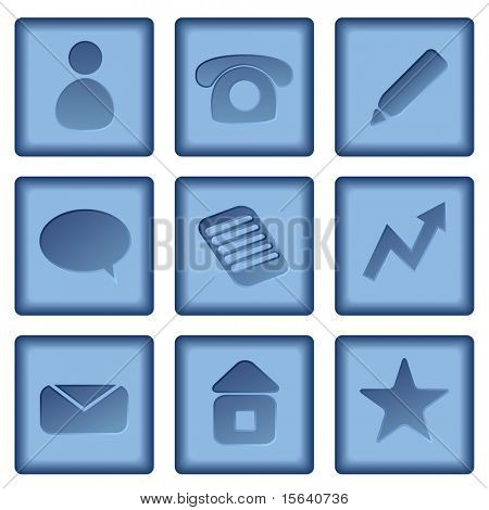 Vector set of blue buttons with business icons isolated on white background.