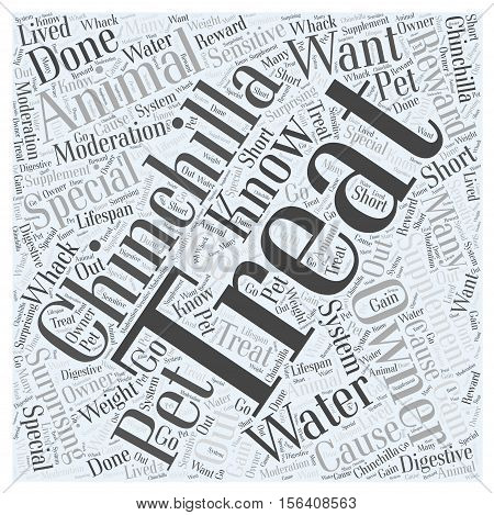 Water and Supplement Treats For Your Chinchilla word cloud concept