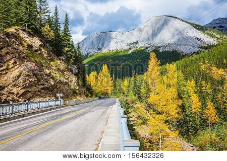 The asphalt road passes among the snow-capped peaks. Cloudy autumn day in the Canadian Rockies