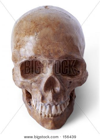 Skull 3 (path Included)