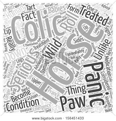 horse colic word cloud text background concept