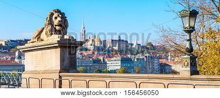 Lion of Chain Bridge, Buda skyline panorama in background, Budapest, Hungary