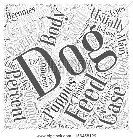 How much should I feed my dog word cloud concept