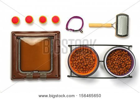 Pet accessories on white background
