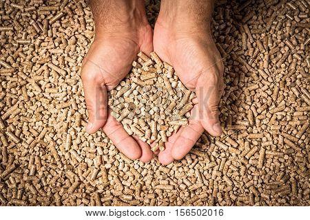 Wood pellets in the background. Biofuels. Cat litter. Man's hands.