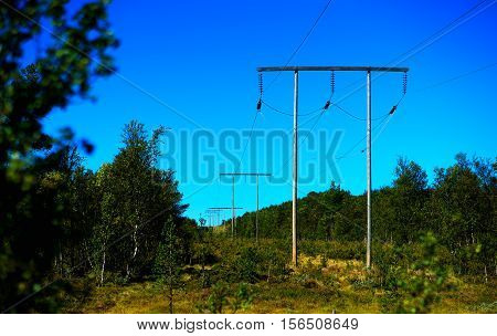 Norway power line in summer forest bokeh background hd
