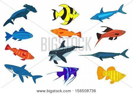 Cute fish vector illustration icons set. Fish flat style vector illustration. Fish icons isolated. Tropical fish, sea fish, aquarium fish set isolated on white background. Sea color flat design fish