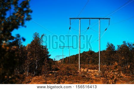 Norway power line in autumn forest bokeh background hd