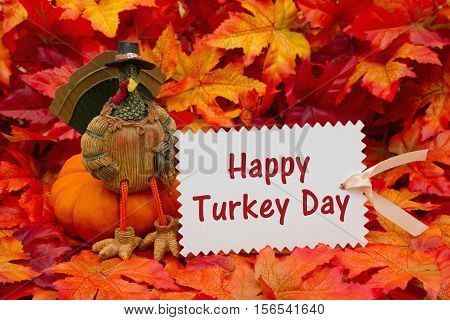 Happy Turkey Day Greeting Some fall leaves and a turkey sitting on a pumpkin and a gift tag with text Happy Turkey Day