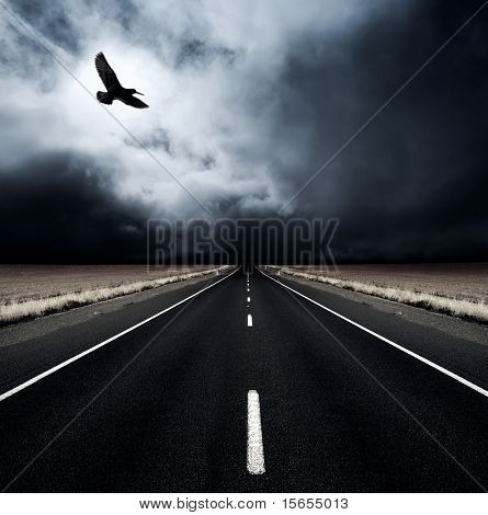 A bird flies away from an incoming storm