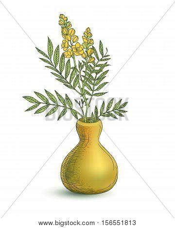 Vase With Senna Plant Flowers