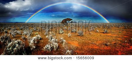 Gorgeous Rainbow in Australian Desert