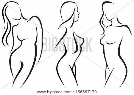Vector illustration set stylized beautiful women silhouettes