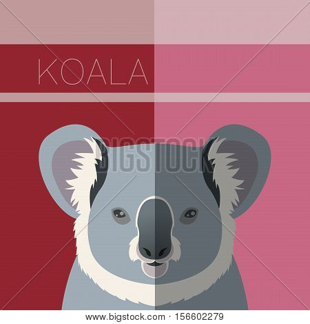 Vector image of the Koala flat postcard