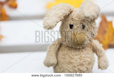 season, childhood and loneliness concept - close up of lonely toy rabbit on bench in autumn park