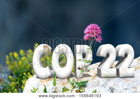 COP 22 in Marrakesh Morocco. 3D Text in Nature