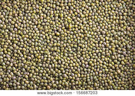 Mung Beans background texture. Mung Beans background.